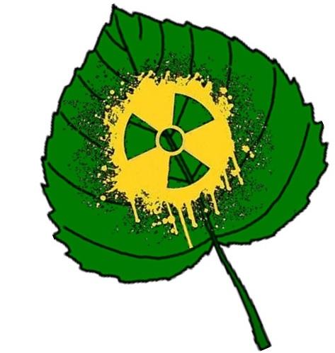 site Tchernobyl, 30 ans après?
