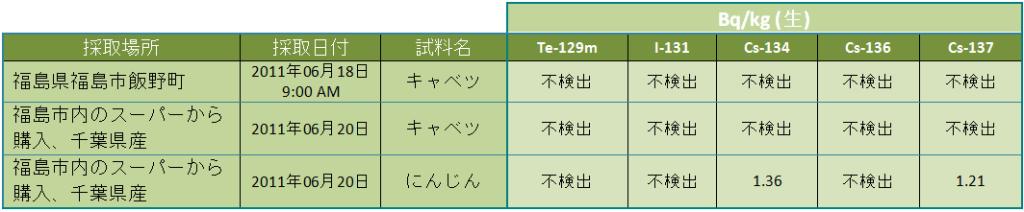 tab 110629 leg jp