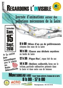 animations autour des pollutions méconnues de la Loire @ Montsoreau, foyer socio-culturel | Montsoreau | Pays de la Loire | France
